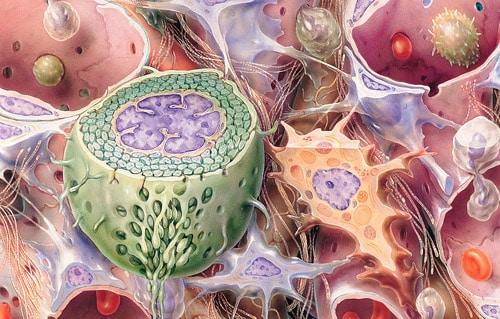 Isabel-Christensen_Medical-Art-and-More_Technik